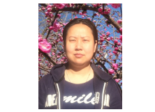 张谧  北京城市发展研究院